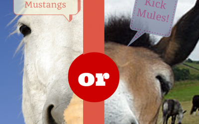 Is It Better to Restrain Mustangs than to Kick Mules?